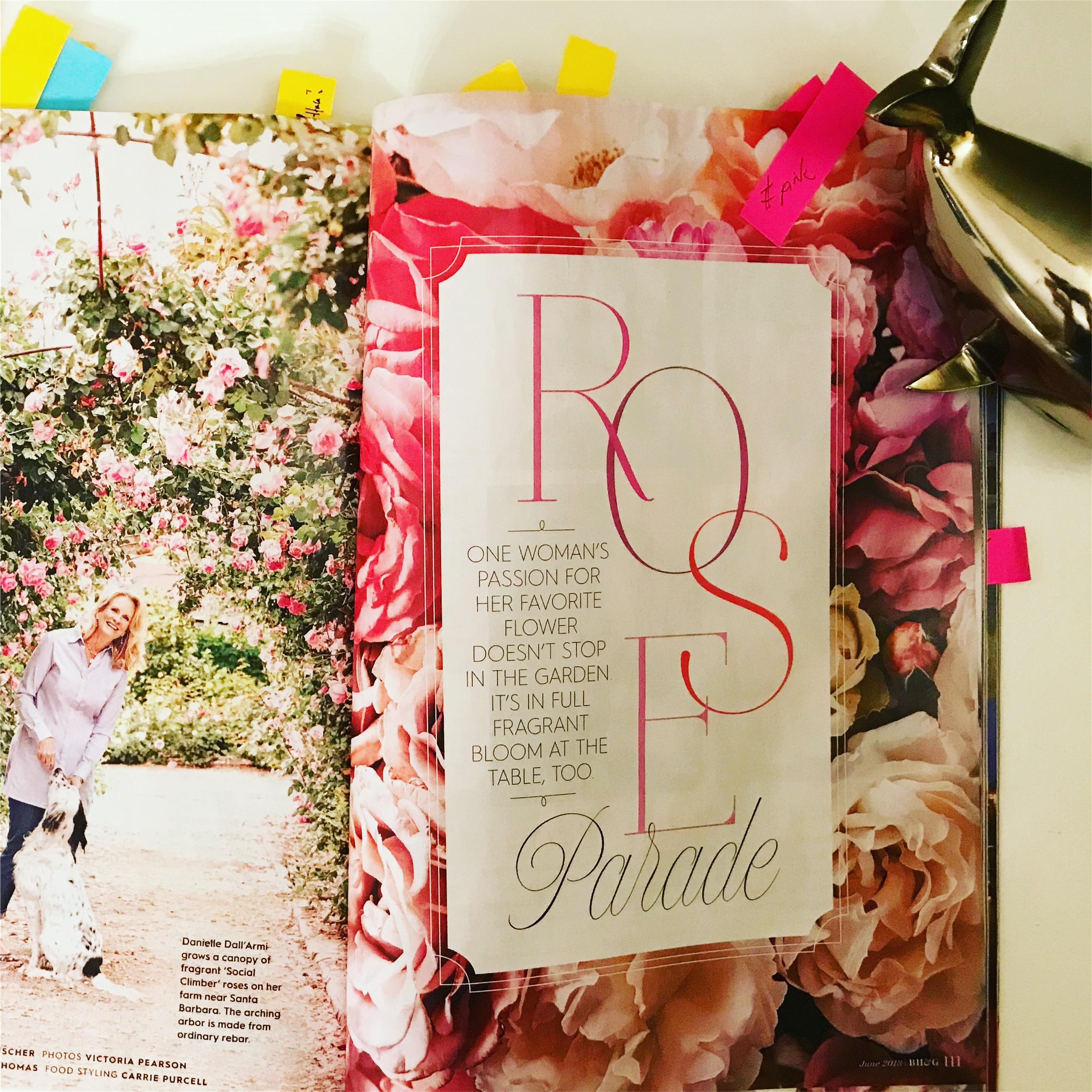 Juneissue_Rosesspread